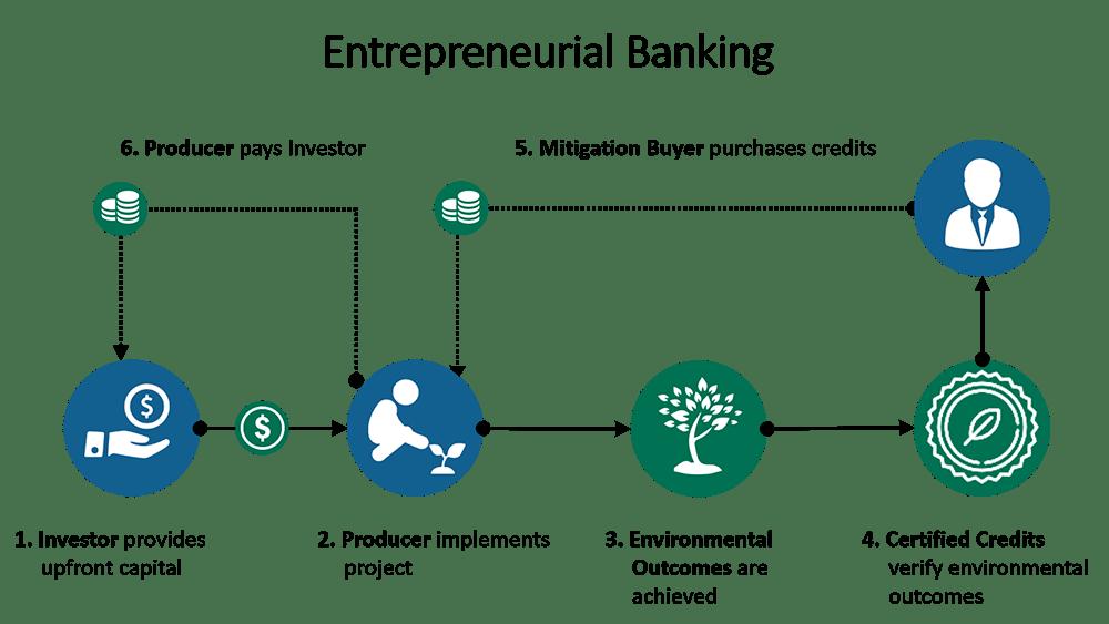 entrepreneurial banking